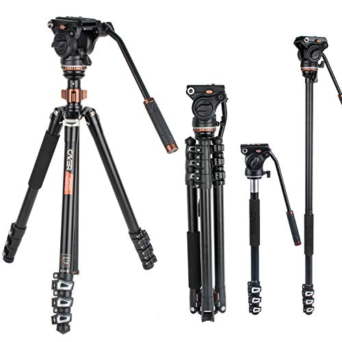 Cayer AF2451 Professional Video Camera Tripod 67 inches with Fluid Drag Head, 4-Section Compact Aluminimum Tripod Convertible to Monopod for DSLR Camera, Video Camcorder