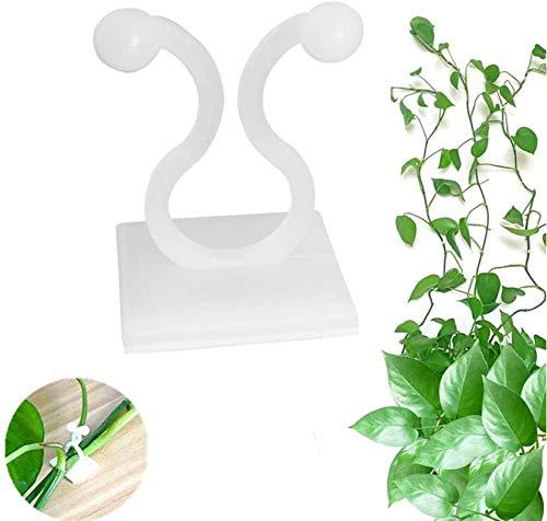 Fijador de plantas, accesorio invisible para pared de plantas, accesorios de pared para escalada, plantas trepadoras, clips de pared para plantas (A, 100 unidades)
