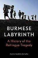 The Burmese Labyrinth
