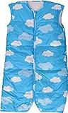 エムール スリーパー 羽毛ダウンスリーパー 軽くてポカポカ 洗える ロング丈 【Lサイズ 約50×100cm】 (雲柄ブルー)