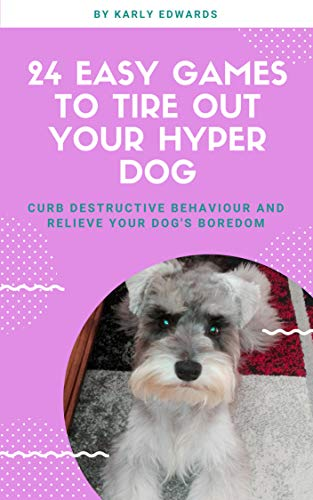 24 easy games to tire out your hyper dog: Curb destructive behaviour and relieve your dog's boredom