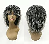 Dreadlock Synthetic Braiding Short Wigs for Black Women Crochet Twist Braids Wigs Afro Curly Synthetic Hair Braiding Wig African Hairstyle (Grey)