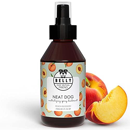 BELLY Veganes Hundeparfüm - Fruchtiges Hunde Parfüm gegen Hundegeruch, Hunde Deo Spray mit natürlichen Inhaltsstoffen, Hundedeo als perfektes Hunde Zubehör, Sanfte Hunde Fellpflege Hundeparfum - 250ml