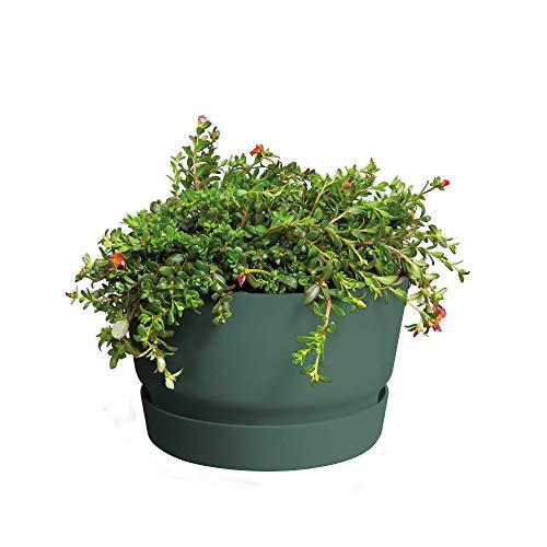 Elho Greenville Blumentopf 33 - Blumentopf - Laubgrün - Draußen  - Ø 33 x H 19.5 cm