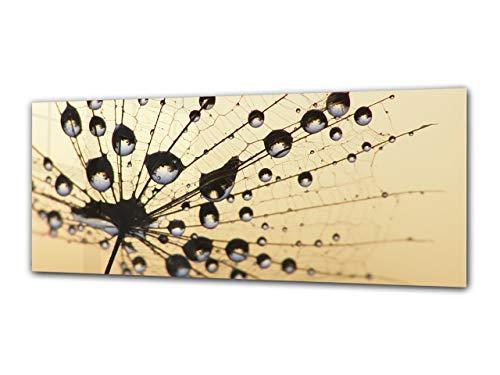 Cuadro de cristal - Imagen sobre vidrio125 x 50 cm – Diente...