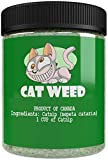 Cat Weed Catnip has Maximum Potency Premium Blend Nip That Your Cats to Go Crazy Over (1 Cup)