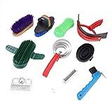DaMohony Pferdereinigungswerkzeug-Set, 10-teilig, tragbares Pferdebürsten-Set mit Kamm und Bürste, Reinigungswerkzeug