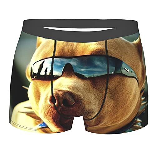 Pitbull con gafas de sol para hombre, pantalones cortos de boxeador, ropa interior clásica, cómoda y elástica
