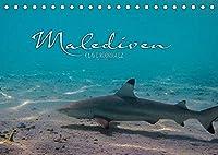 Unterwasserwelt der Malediven I (Tischkalender 2022 DIN A5 quer): Die vielfaeltige und faszinierende Unterwasserwelt der Malediven. (Monatskalender, 14 Seiten )