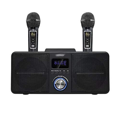 WYJBD Dual-WLAN-Mikrofon Bluetooth-Lautsprecher Mobile Wireless Karaoke-drahtloser Stereo-Schwarz-30W-Lautsprecher-Set (Color : Black)
