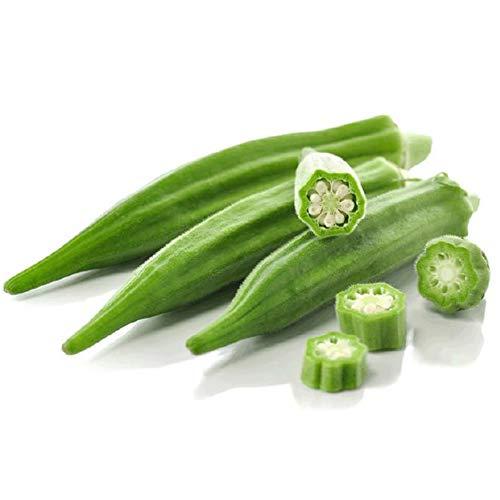 Okra semoj 70+ Abelmoschus esculentus Freŝa verda La plej populara gombo en la merkato Organikaj legomoj Facile kultiveblaj fruktoj Plantoj Semoj por plantado