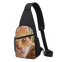 ワンショルダーバッグ メンズ 斜めがけ胸バッグ ボディー肩掛けバッグ 小型手提げバッグ 出張 通勤 通学用 鉄网 ねこ 猫柄