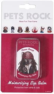 Pets Rock Lip Balm Pirate
