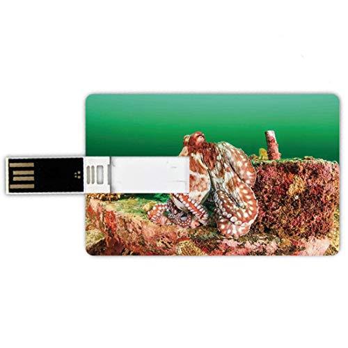 USB-Sticks 8GB Kreditkartenform Ozean-Dekor Memory Stick-Bankkartenstil Große Krake,die auf künstlichem Rückstand im dunklen trüben Wasser-tropischen Bild der wild lebenden Tiere,grünes Brown-Rot sich