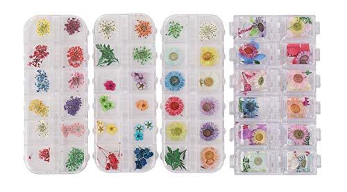 ドライフラワー 48種類 4ボックス セット 押し花 パーツ ネイル ハーバリウム レジン 素材 花材 かすみ草 デコレーション