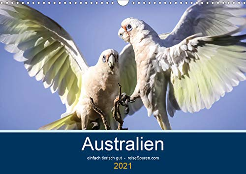Australien - einfach tierisch gut (Wandkalender 2021 DIN A3 quer)