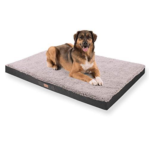 brunolie Balu extra großes Hundebett in Grau, waschbar, orthopädisch und rutschfest, kuscheliges Hundekissen mit atmungsaktivem Memory-Schaum, Größe XXL (140 x 100 x 10 cm)