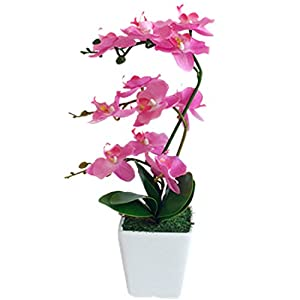 YSZL 15″ Tall Artificial Silk Phalaenopsis Orchid Flower Plant Pot Arrangements (Rose Red)