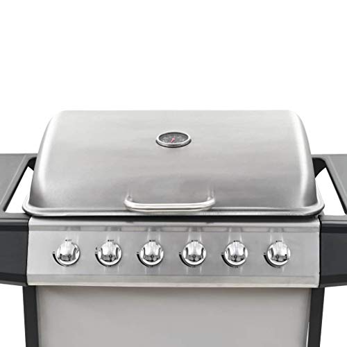 vidaXL Gas BBQ Grill with 6 Cooking Zones Stainless Steel Silver Garden Burner