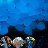 COPSD 300 Piezas de Piedras Luminosas Azules, Piedras Luminosas de jardín Que Brillan en la Oscuridad, Piedras Decorativas de jardín para pasarelas, decoración al Aire Libre, Acuario, Camino, césped