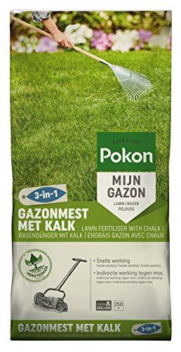 Pokon Rasendünger mit Kalk 3-in-1, organischer Komplett Rasendünger, mit Sofort und Langzeitwirkung zur ganzjährigen Rundum- Rasenpflege, 250qm, 20kg Sack