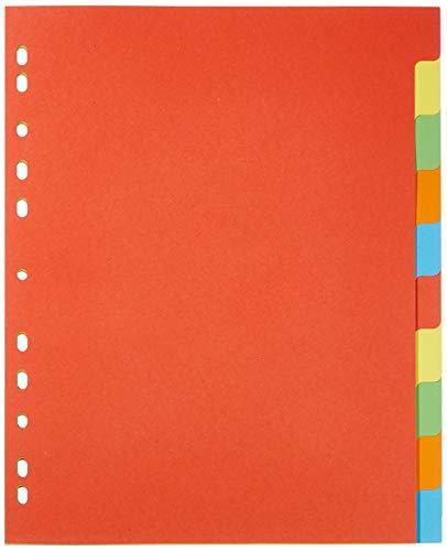 Pagna 32006-20 Register, A4, XXL, 10-teilig, 5-farbig