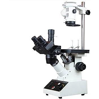 Radical tricocular Tejido invertido Cultura Microscopio...
