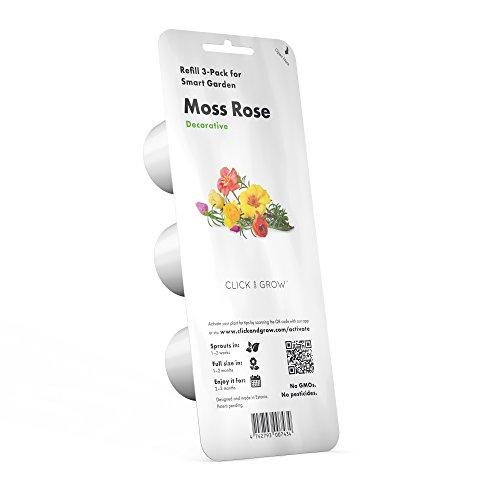 Click and Grow Recharge Triple de Roses Smart Garden
