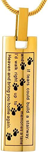 TYBM Collares para Hombre Colgante Conmemorativo Recuerdo para Mascotas Perro/Gato Huella De Acero Inoxidable Hueso Cremado Cenizas-D