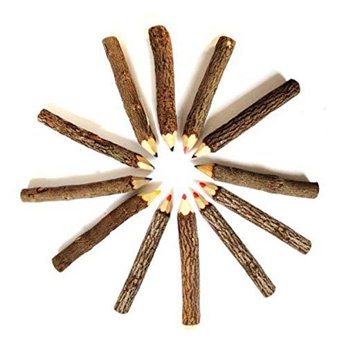 Toyandona Bleistifte für Bäume, 9-10 cm, Buntstifte, Holz, Zweige, zum Zeichnen (gemischte Farbe)
