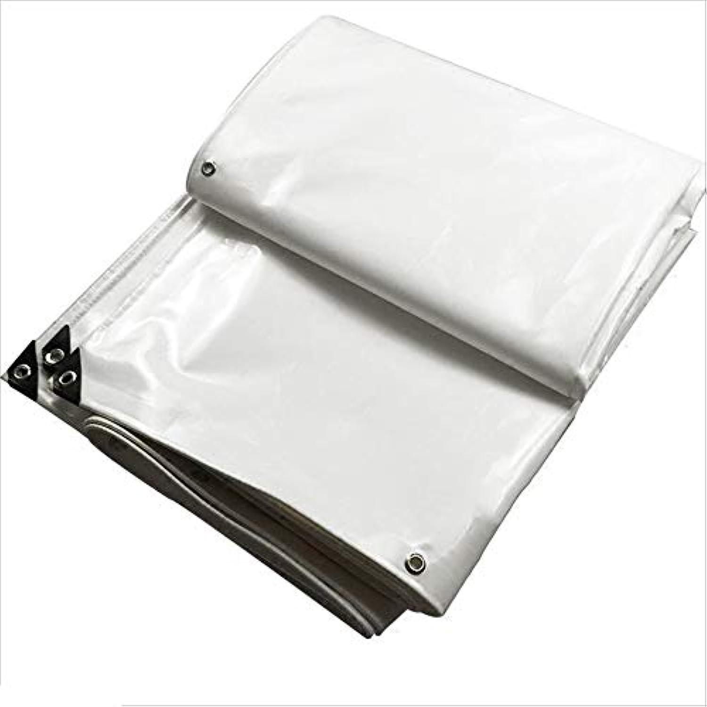 NYDZDM Plane UV-Plane Regenfestes Tuch Wasserdichter Sonnenschutz PVC-Tuch Parkhaus Tuch Weiß (größe   5  8m) B07QJVYYZ4  Empfohlen heute