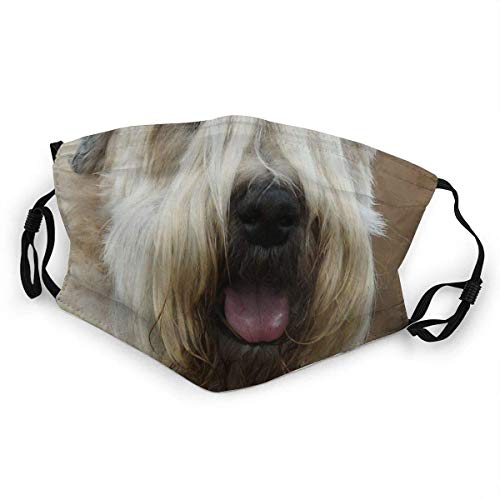 Mouth Scarf Soft Coated Wheaten Terrier Second Turban Headdress -Able Mouth Scarf Anti Dust Face Protection Gift Face Scarf Outdoor Durable Adjustable Earloop Printing Anime Warmt