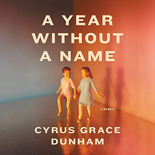 A Year Without a Name  By  cover art