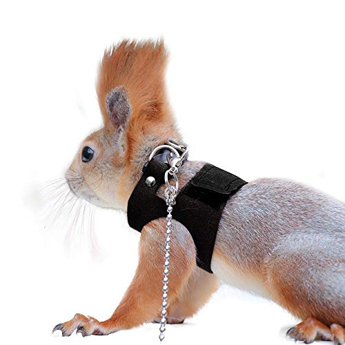 Squirrel Traction Rope with 1.8m Lead Leah, Adjustable Small Animal Walking Harness, Anti-Biting Chain Rope Vest Strap for Hamster Gerbil Rat Mouse Ferret Chinchilla and Small Animals