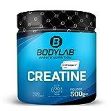 Bodylab24 Creatine Creapure® Powder 500g | reines Kreatin Monohydrat Pulver | Hochdosiertes Creatin für den Muskelaufbau