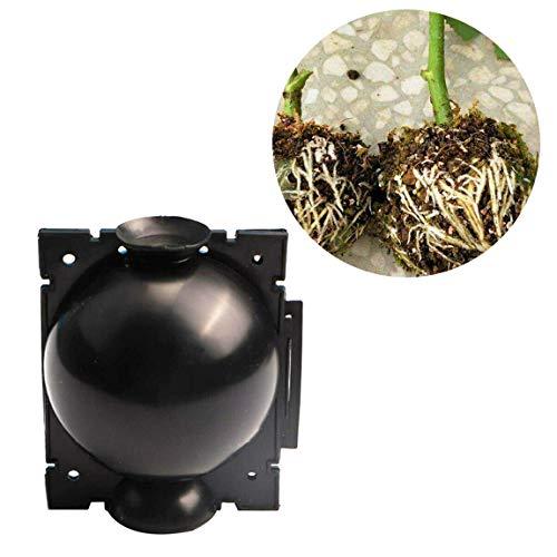 Pflanzenwurzel-Wachstumsbox wiederverwendbare Pflanzenwurzelvorrichtung Botanik-Wurzel-Controler-Kugel Hochdruckbox-Pfropfpflanzen-Propagator (Schwarz, M)