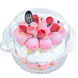 50 Pcs Single Individual Cupcake Container, Plastic Disposable Cupcake Holder with Lid, Cake Muffin Dome Cases Boxes Cups Pod, Favor Party Birthday Picnic Restaurant Hamburgers Sandwich Salad Fruit