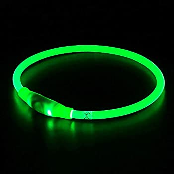 BSeen LED Dog Collar USB Rechargeable Glowing Pet Dog Collar for Night Safety Fashion Light UP Collar for Small Medium Large Dog  Neon Green