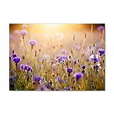 Tulup Impresión en Vidrio - 100x70cm - Cuadro Pintura en Vidrio - Cuadro en Vidrio Cristal Impresiones - Flores y Plantas - Multicolor - Flores Silvestres