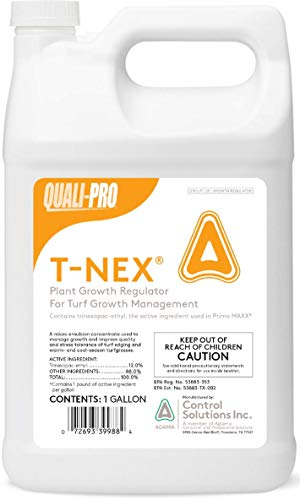 Quali-Pro T-Nex Plant Growth Regulator (Primo Maxx) - Manage Growth, Improve Quality and Color, Helps Produce Healthy, Durable Blades in Turf Grass (1 Gallon)