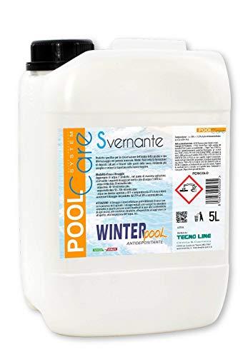 Winter Pool Hiver à action anticalcaire et anti-dépôt pour piscine 5 litres