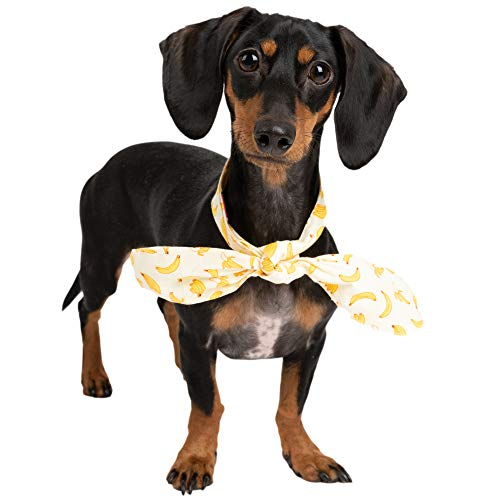 Bloomingpet Fruity Scarf Bandana for Small Medium Large Dogs Doggy Puppy Pet | Christmas Holiday Fall | Girl Big Extra Little (S, Banana)