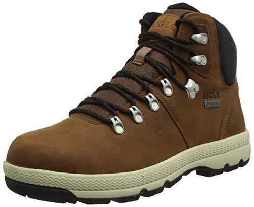 Aigle Tenere Light Retro GTX, Zapatos de High Rise Senderismo para Hombre, Marrón (Tortoise/Black 001), 39 EU