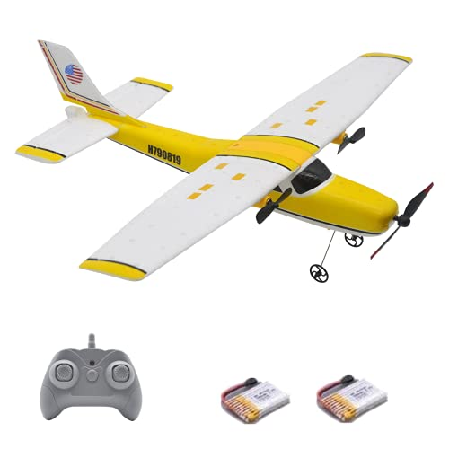 Remote Control Airplane - 2.4Ghz 2 Channel RC Airplane Ready to Fly,EPP Foam RC Plane Built in...