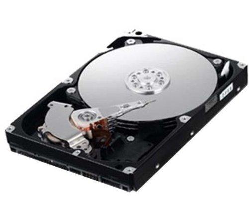 "SAMSUNG 6,35 cm (2,5\"") Festplatte Spinpoint HM160HC - 160 GB - 5400 RPM - IDE"