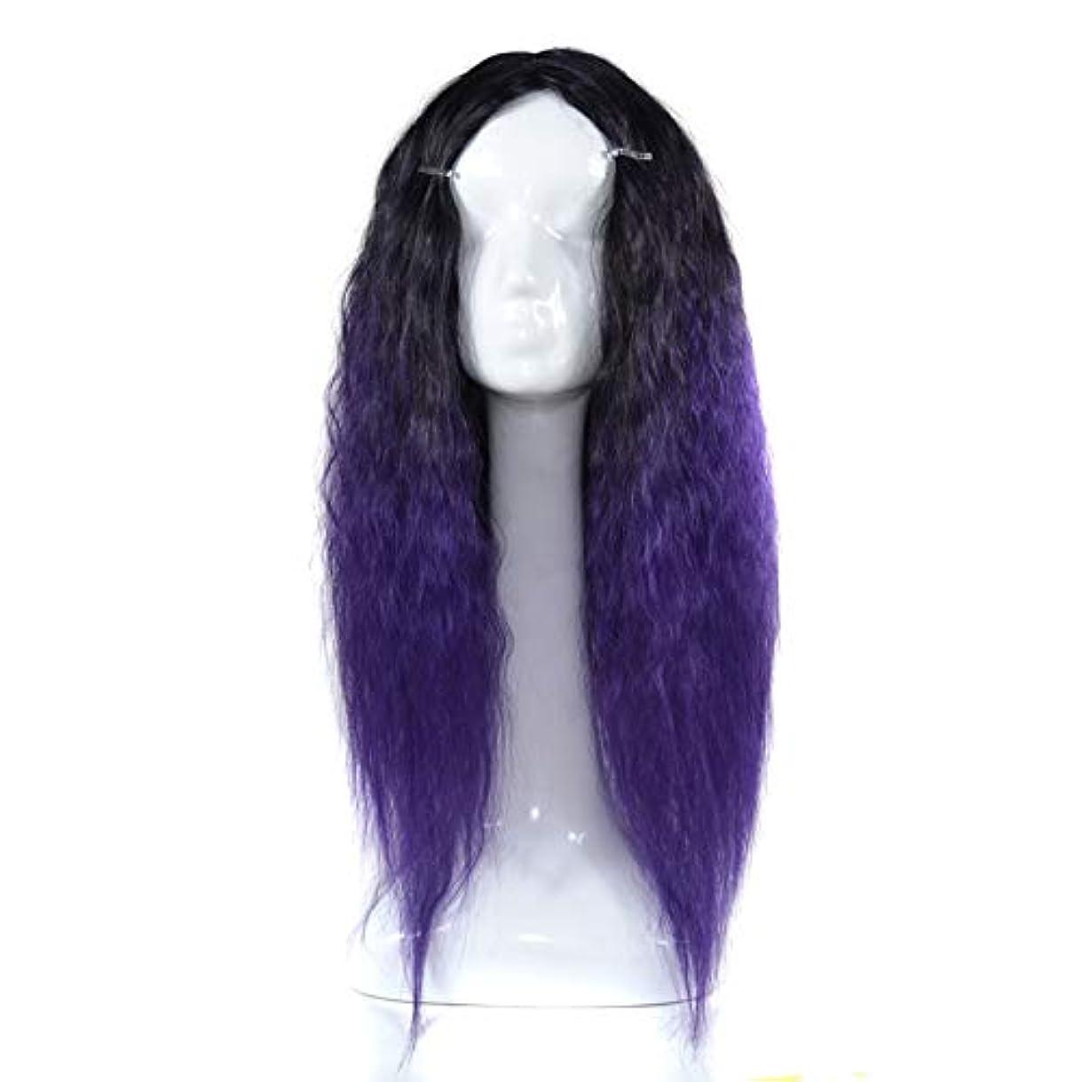 インシュレータ是正群れZXF 黒のグラデーションダークパープルのかつらヘッドギアの長い巻き毛のかつらアニメフード色のトウモロコシのやけど 美しい