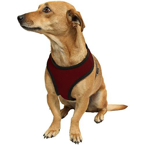 Ducomi Snoopy Pettorina Cane Regolabile per Cani di Taglia Piccola e Media - Imbracatura Collare per Cuccioli e Animali Mini Chihuahua, Bulldog Francese - Morbido e Traspirante (S, Red)