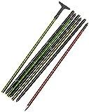 Salewa Lightning 320 Pro Sonda Lightning 320 Pro, Unisex adulto, Green/Black, Taglia Unica