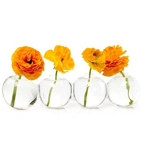 "Caterpillar, Large Clear Glass Bud Vase 13"" Long 4"" Wide 3.5"" Tall for Short Flowers, Unique Low Sitting Flower Vase, Cute Floral Vase for Home Decor, Weddings, Floral Arrangements, Arranging"