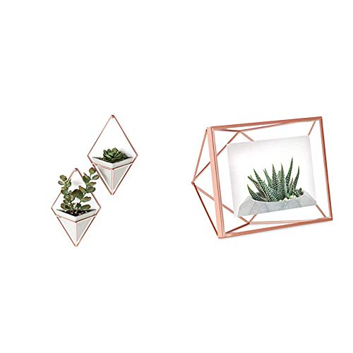 Umbra Trigg, Jardinière Suspendue & Pot Géométrique pour Décoration Murale & Prisma Cadre Photo Filaire en métal Entre Deux-Verres Prisma, Poser ou à accrocher, pour 1 Photo 10x15cm cuivre
